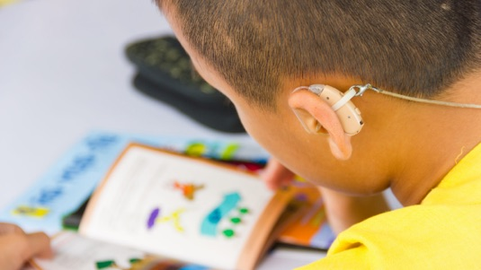 Hearing Impairment Enrichment